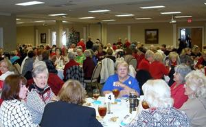 Click to view album: December 2014 Luncheon